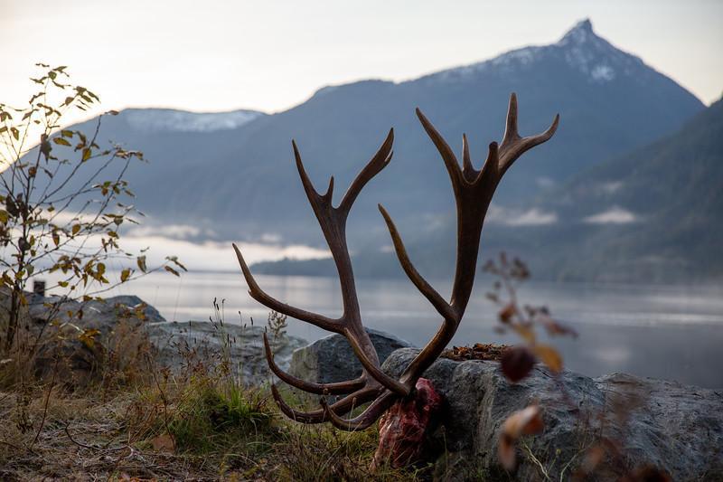 Btk Elk A